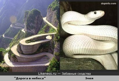 """""""Дорога в небеса"""" похожа на змею."""