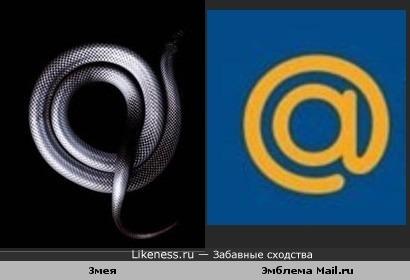 Змея похожа на эмблему Mail.ru.