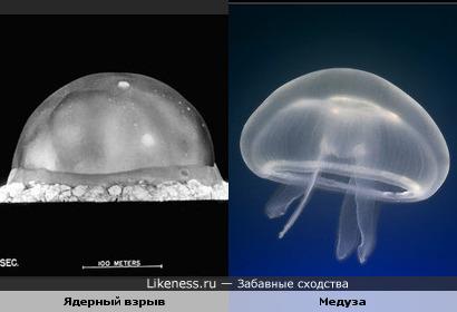 Ядерный взрыв похож на медузу.