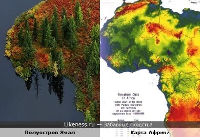 Россия - Африка.