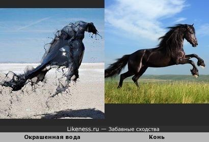 В парящей жидкости я вижу коня.