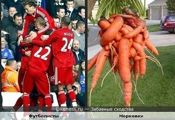 Футболисты, как морковки