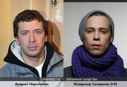 Андрей Мерзликин и Владимир Солдатов похожи