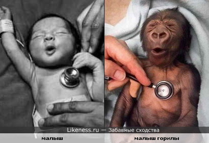 Похожая реакция малышей на стетоскоп