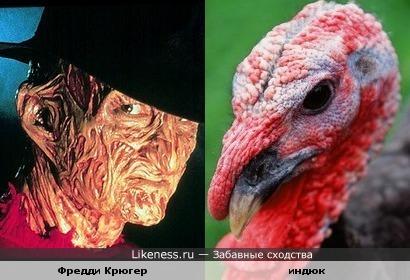 Фредди Крюгер похож на птицу