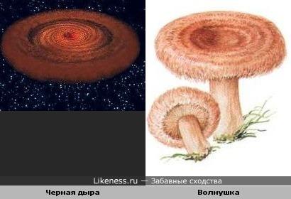 Модель чёрной дыры в галактике 1H0707-495 и волнушка