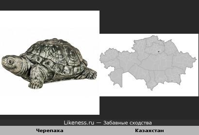 Черепаха и контур Казахстана