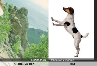 скала на Байкале и пёс