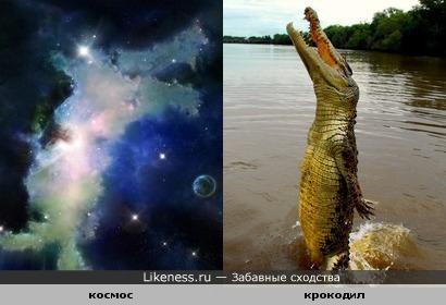 крокодилы в космосе