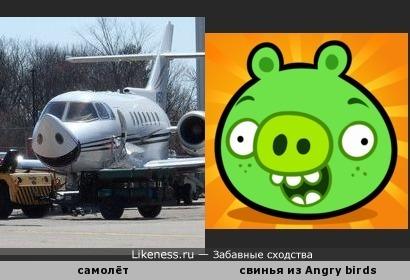 Angry birds летающая свинья