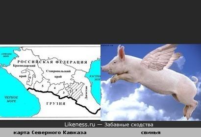 карта Северного Кавказа похожа на свинью