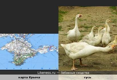 карта Крыма похожа на гуся