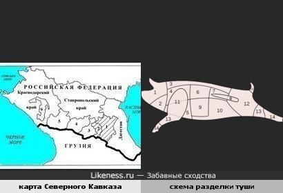 карта Северного Кавказа и схема разделки туши похожи
