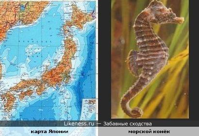 карта Японии похожа на морского конька