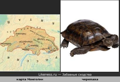 Перевёрнутая карта Монголии похожа на черепаху