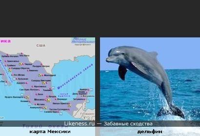 Карта Мексики похожа на дельфина