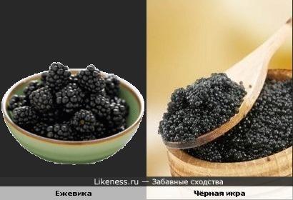 Ежевика похожа на чёрную икру