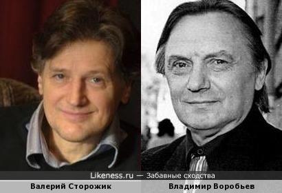 Валерий Сторожик и Владимир Воробьев