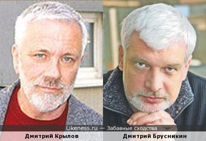 Дмитрий Крылов и Дмитрий Брусникин