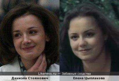 Даниэла Стоянович похожа на Елену Цыплакову