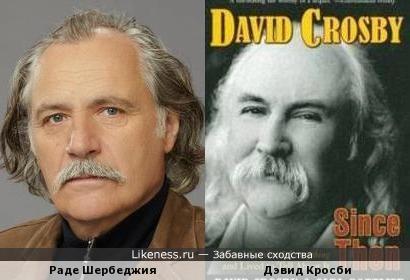 Раде Шербеджия и Дэвид Кросби