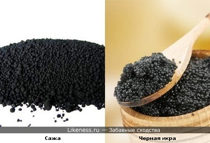 Сажа похожа на черную икру