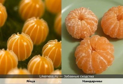 Яйца насекомого похожи на мандарины