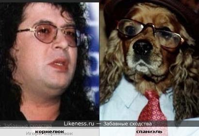 Песик и Корнелюк похожи?