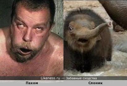 http://img.likeness.ru/uploads/users/7679/1403258632.jpg