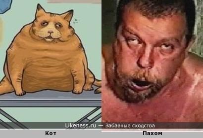 Нарисованный кот похож на Пахома