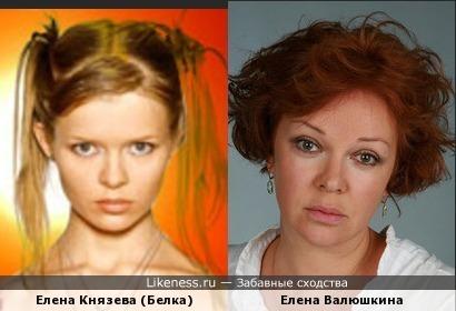 Елена Князева (певица Белка) похожа на Елену Валюшкину