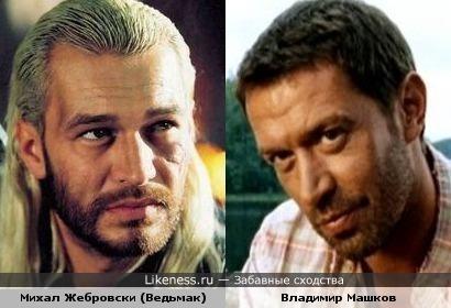 Михал Жебровски и Владимир Машков похожи