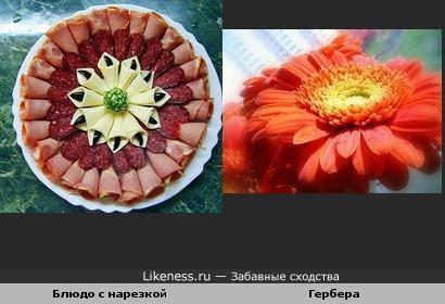 Блюдо с колбасной нарезкой похоже на герберу