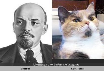Ленин превращает на кота Ленина