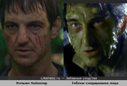 Гоблин-сморщенное лицо из Десятого Королевства и Уильям Мэйпотер похожи