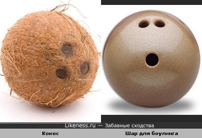 Кокос похож на шар для боулинга