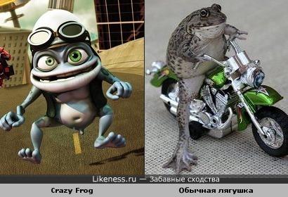 Crazy Frog реально существует