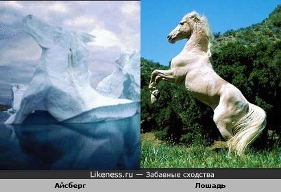 Ледяная Лошадка