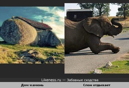 Дом камень похож на слоника