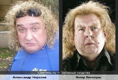Александр Морозов и Питер Петтигрю похожи..