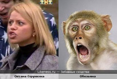 Оксана Стрункина похожа на Обезьяну