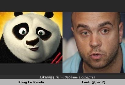 У панды есть двойник..:)