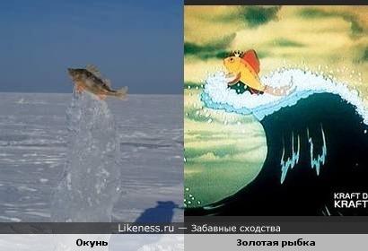 Золотая рыбка зимой