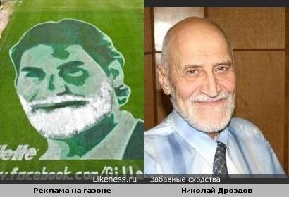 Реклама на газоне и Николай Дроздов
