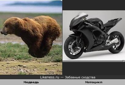 Бегущий медведь из недавнего лайкнесса и мотоцикл