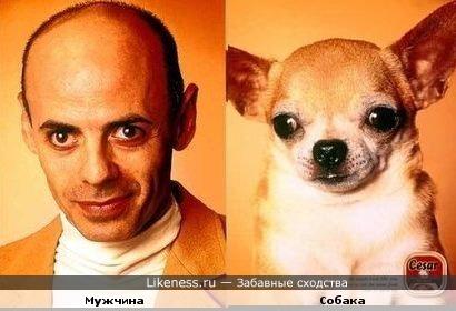 Мужчина похож на собаку