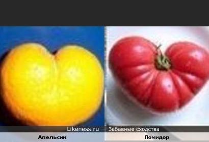 Мутированный апельсин похож на мутированный помидор)