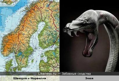 Северные страны похожи на нападающую змею