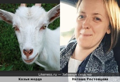 Наташа Ростовцева похожа на козью морду