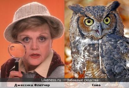 Джессика Флетчер напоминает сову